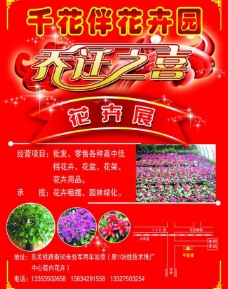花卉彩页图片