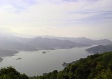 万绿湖图片