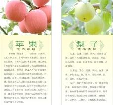 苹果 梨子的营养成份图片