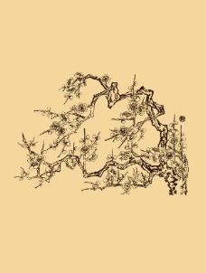 白描折枝梅花图片
