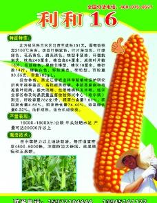 种子宣传彩页图片