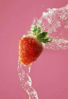 水果 草莓图片