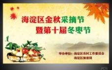第十届冬枣节图片