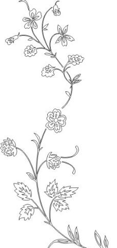 藤蔓花图片