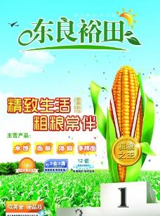 粗粮 玉米图片