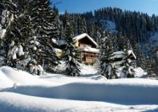 冬季原野大雪图片