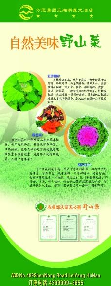自然美味野山菜展架图片