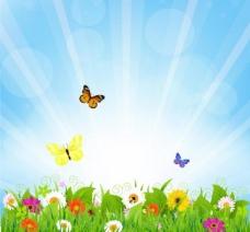 草地鲜花蝴蝶 春天背景图片