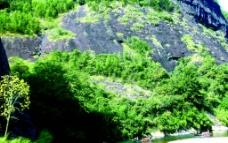 山壁 小溪图片