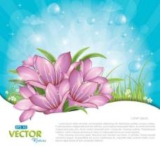 鲜花草地春天背景图片