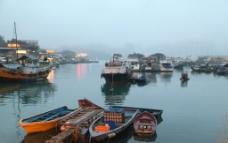 香港鲤鱼港图片