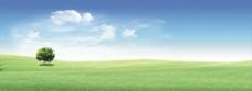 草原 绿色草原图片