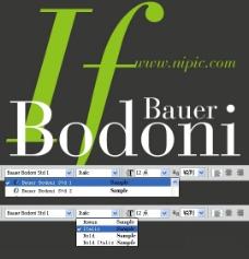 Bauer Bodoni Std系列字体下载