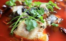 花椒鱼图片