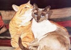 亲密小猫绘画图片
