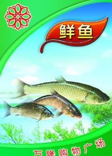 超市鱼区图片