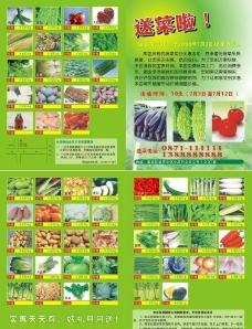 绿色蔬菜送货上门图片
